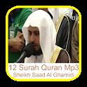 Saad Al Ghamidi 12 Surah Quran icon