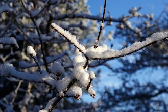 Photo: ... men ak, ak pludselig væltede det ned med sne ...