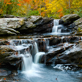 Devil's Den Falls by Alabama Photos - Landscapes Forests ( water, waterfall, fall, forest )