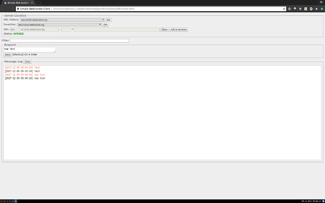 Simple WebSocket Client