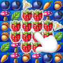 Fruits Garden Mania Blast icon