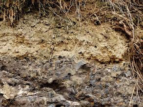 Photo: Der Kaiserstuhl - ein vor 15 Millionen Jahren entstandenes Vulkanmassiv: Im Aufschluss zu sehen basaltisches Auswurfmaterial und Tuff. Darüber der aus den Schotterflächen des Rheins in den Eiszeiten angewehte Löss.