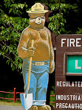 Photo: (Year 2) Day 354 - Smokey the Bear