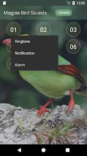 Magpie Bird Singing & Ringtones - náhled