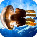 Jellyfish Video Live Wallpaper icon