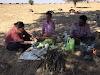 India. Rajasthan Thar Desert Camel Trek. Team work preparing lunch