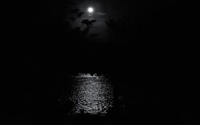 La notte. di donnavventura