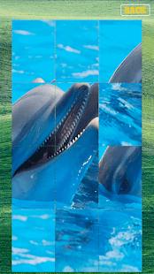 Animals Game for PC-Windows 7,8,10 and Mac apk screenshot 6