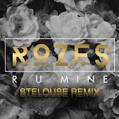 R U Mine (SteLouse Remix)