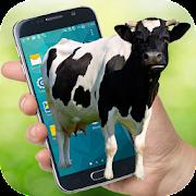 Cow on Screen Funny Cute Cow Walking in Phone Joke