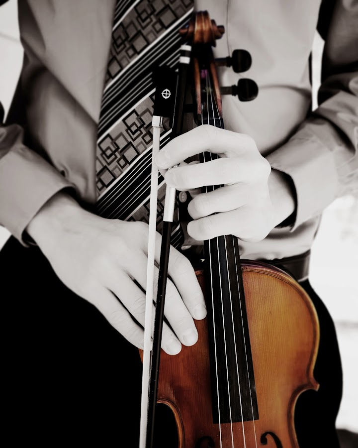 The Violin by Karen  Edwards - People Musicians & Entertainers ( music, violin, hands, instrument )