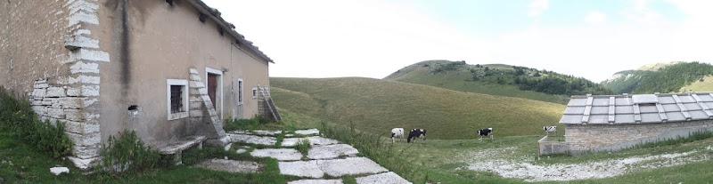 Malga montana di milanese7814