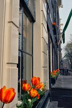 Photo: Amsterdam - Tulips!