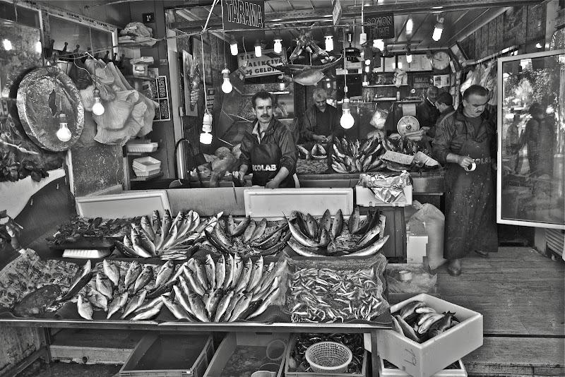 Chi dorme non vende pesci !! di joepixel
