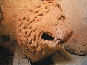 Photo: Fig. 7. Leone, peperino. Civita Castellana, Forte Sangallo.