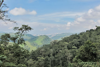 Photo: Manizales from Rio Blanco Reserve