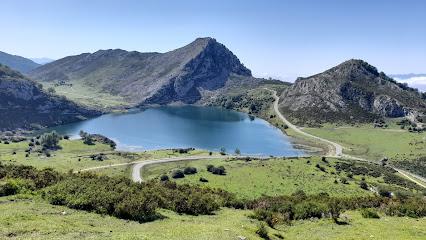 La carretera que conduce a los Lagos de Covadonga, entre las más bonitas de España.