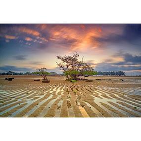 :: Bakau Galau :: by Bayu Adnyana - Landscapes Beaches