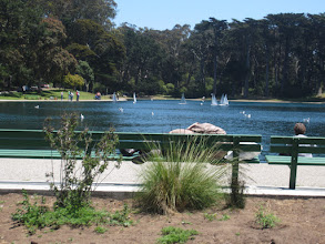Photo: Little sail boats at Golden Gate Park
