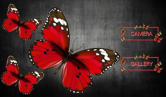 Butterfly Photo Frame - náhled