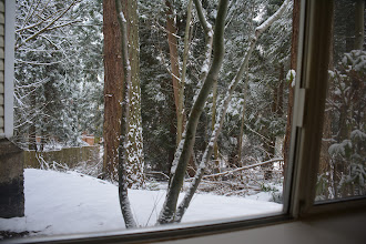 Photo: A view from the apartment, from within family/dining room.