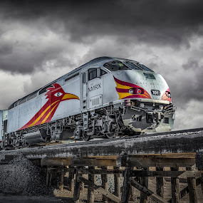 NM RailRunner by Fred Prince - Transportation Trains ( commuter, railrunner, black and white, new mexico, train )