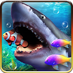 Shark aquarium live wallpaper