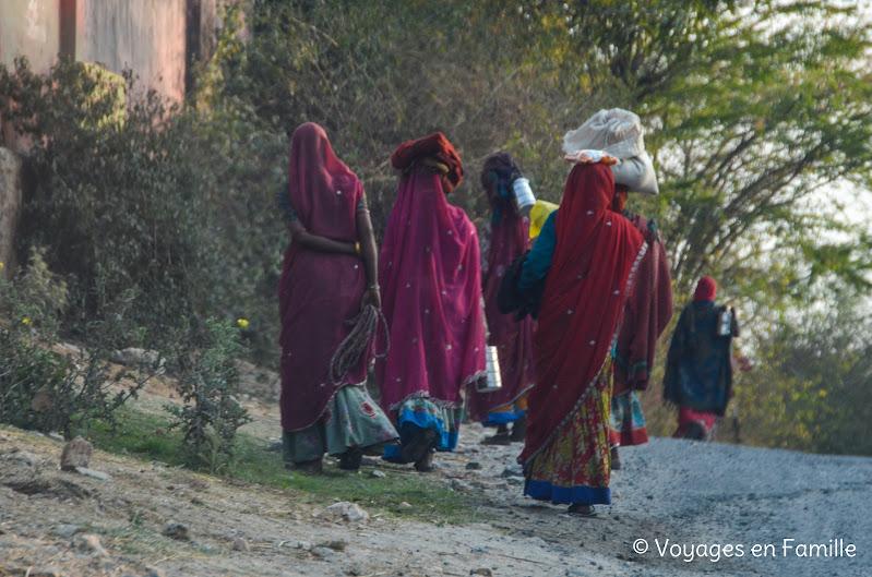 Saris Udaipur