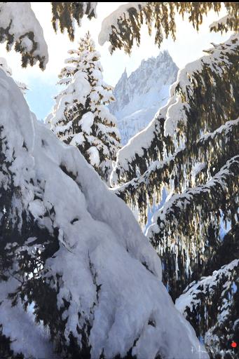 Painting of les Aiguilles de Chamonix