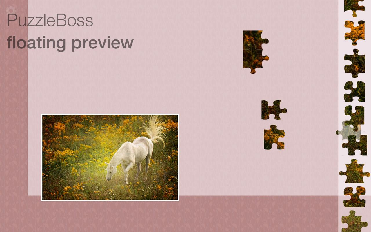 Deluxe Jigsaw Puzzles- screenshot