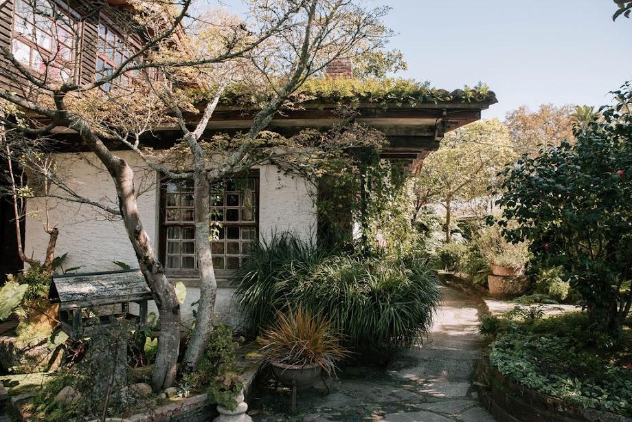 Foto Jardín botánico Fundación Sales 17