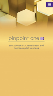 pinpoint one - náhled