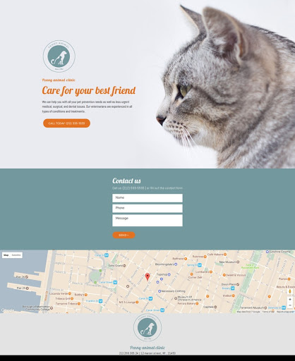 Build a Healthy pet Website