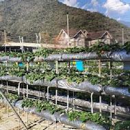 台一生態休閒農場