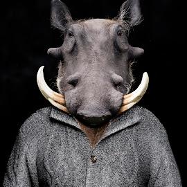 William the Warthog by Michal Challa Viljoen - Digital Art Animals ( person, zoo, advertising, edit, grey, campaign, composite, photography, warthog, photoshop, animal,  )