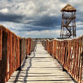 planks by Kirk Kimble - Buildings & Architecture Bridges & Suspended Structures ( tourist, tower, wood, cozumel, bridge )