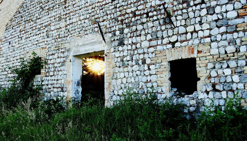 The Wall di StePh
