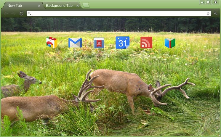 Photo: Grazing Deer (http://goo.gl/26gx1)