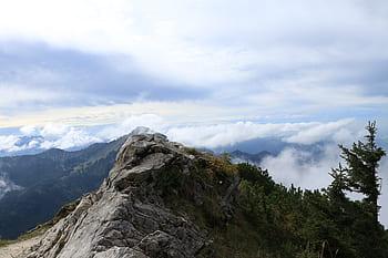 Bosques nubosos del Noroeste Argentino