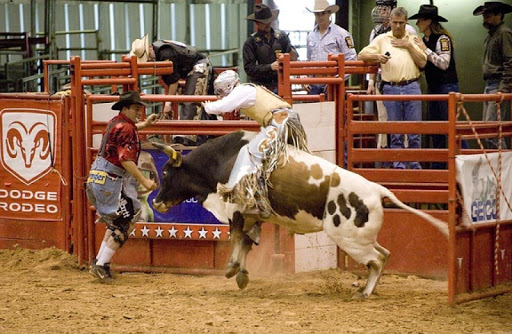 Rodeo Sports Wallpapers