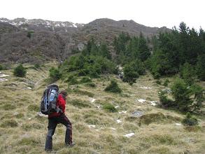 Photo: Urcam spre Museteica prin boschetarie prima parte.