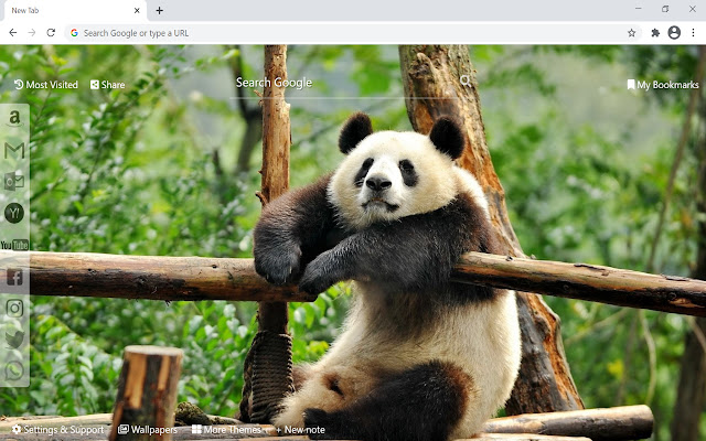 Panda Wallpaper HD New Tab
