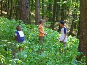 Photo: A to se již děti probíjejí k jezeru.