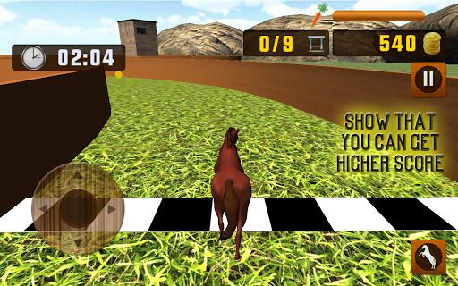 Horse Running Simulator