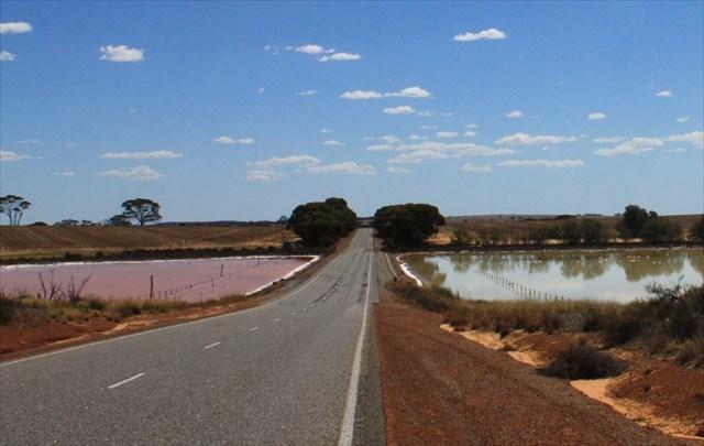 Image result for 10. Quairading Pink Lake, Western Australia photo