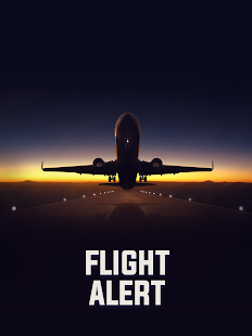 Flight Alert Simulator 3D Free- screenshot thumbnail