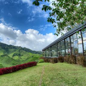Boh Tea Centre, Cameron Highlands by Syahidee Omar - Landscapes Travel