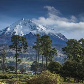 Snowy volcano by Cristobal Garciaferro Rubio - Landscapes Mountains & Hills ( volcano, mexico, forest, citlaltepetl, snowy volcano )