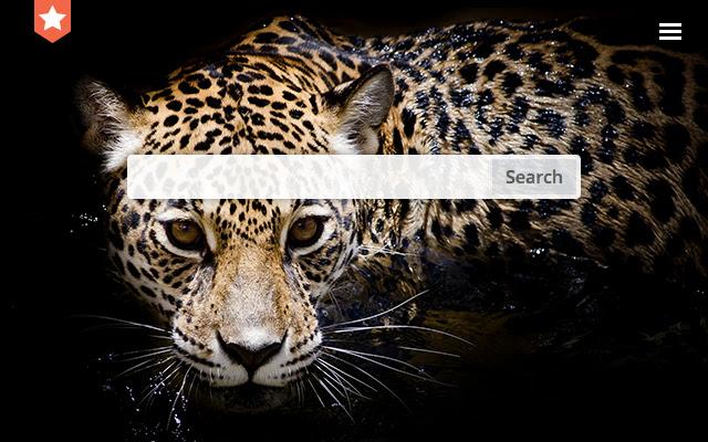 Cheetah. New tab