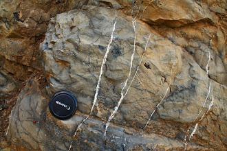 Photo: Sötét színű mészmárga-rétegek, szépen fejlett kalcitos érkitöltésekkel